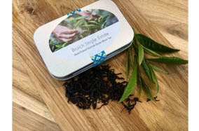 10g tea Broich single estate
